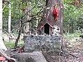 Saasthan-2-kallar-meenmudi-kerala-India.jpg
