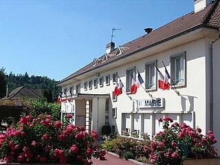 Saint-Léonard, Vosges Commune in Grand Est, France