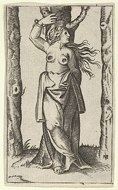Saint Agatha tied to a tree, her breasts have been cut off, from the series 'Piccoli Santi' (Small Saints) MET DP853509.jpg