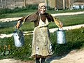 Saint Petersburg woman carrying buckets of water, near Leningrad (1).jpg