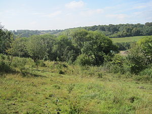 Saltbox Hill - View from Saltbox Hill