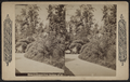 Scene in Prospect Park, Brooklyn, N.Y, from Robert N. Dennis collection of stereoscopic views.png