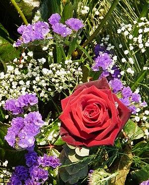 Gypsophila paniculata - Use of Gypsophila in flower arrangement