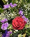 Schleierkraut und rote Rose.jpg
