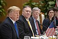 Secretary Pompeo Joins President Trump for a Working Lunch with Vietnamese Prime Minister Nguyễn Xuân Phúc (40260746753).jpg