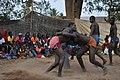 Senegalese lutter 4.jpg