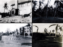 Four pictures show: a portion of a wall torn from a house, with a palm tree lying on a beach; a group of people walking amid piles of wood and puddles of water, with leaning palm trees showing broken fronds in the foreground; a group of large palm trees by a roadside, with one palm tree knocked down and debris on the ground; and a group of palm trees showing broken fronds.