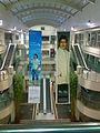 Shipra Mall.jpg