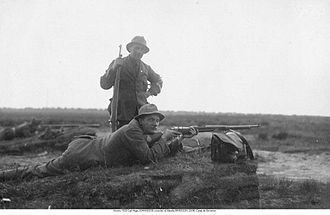 Shooting at the 1920 Summer Olympics - Carl Johansson and Mauritz Eriksson
