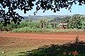 Sitio Alves - panoramio.jpg