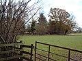 Slepe Moor - geograph.org.uk - 86979.jpg