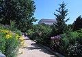 Smithsonian Gardens in July (20088141125).jpg