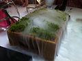Smoking moss (7164111563).jpg