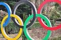 Sochi2014 - panoramio (105).jpg
