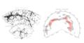 South Pole Wall morphology.png