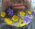 Spring flowerbed.jpg