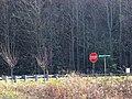Spruce Pine, NC 28777, USA - panoramio.jpg
