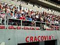 Stadion Cracovii (8145535857).jpg