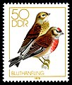 Stamps of Germany (DDR) 1979, MiNr 2393.jpg