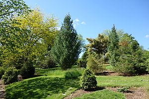 Image of Stanley M. Rowe Arboretum: http://dbpedia.org/resource/Stanley_M._Rowe_Arboretum