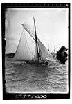 Starboard view of yacht ERA under sail, Sydney Harbour (6798775830).jpg