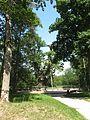 Stelmužė 32295, Lithuania - panoramio (9).jpg