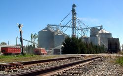 The grain elevators at harvest time, October 2006