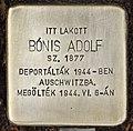 Stolperstein für Adolf Bonis (Nyíregyháza).jpg