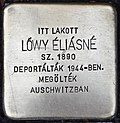 Stolperstein für Eliasne Löwy (Miskolc).jpg