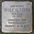 Stolpersteine Köln, Amalie Blühdorn (Theodor-Heuss-Ring 60).jpg