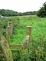 Stone and timber stile - geograph.org.uk - 941241.jpg