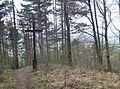 Stuifenkreuz, Der Stuifen, der mit seiner bewaldeten Größe und Form in besonderer Weise die umliegende Landschaft gestaltet, ist mit 757 Metern der höchste der Dreikaiserberge. Durch die Tätigkeit von Rems und F - panoramio.jpg