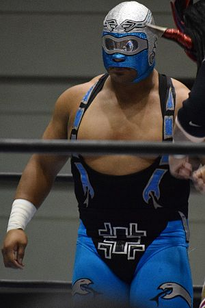 CMLL Arena Coliseo Tag Team Championship - Stuka Jr., one half of the longest reigning Arena Coliseo Tag Team Champion alongside Fuego