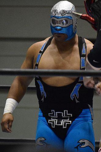CMLL Arena Coliseo Tag Team Championship - Stuka Jr., one half of the longest reigning Arena Coliseo Tag Team Champion alongside Fuego