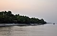 Sundarbans during the evening 1.jpg