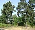 Sweden. Stockholm County. Haninge Municipality 073.JPG