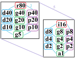 Tetracontagon - The symmetries of a regular tetracontagon. Light blue lines show subgroups of index 2. The left and right subgraphs are positionally related by index 5 subgroups.