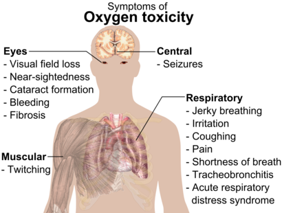 A diagraph showing a man torso and listing symptoms of oxygen toxicity: Eyes– visual field loss, nearsightedness, cataract formation, bleeding, fibrosis; Head– seizures; Muscles– twitching; Respiratory system– jerky breathing, irritation, coughing, pain, shortness of breath, tracheobronchitis, acute respiratory distress syndrome.