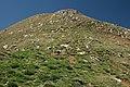 Taga - panoramio (2).jpg
