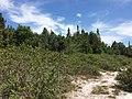 Tangkiling Nature 05.jpg