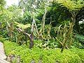 Tanglin, Singapore - panoramio (26).jpg