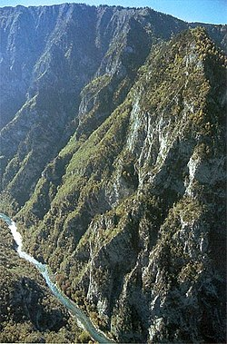 Tara River Canyon.jpg
