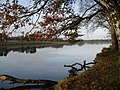 Tatton Mere (Tatton Park) - geograph.org.uk - 78592.jpg