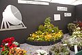 Tatton Park Flower Show 2014 020.jpg