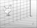 Théorie du détour - poule 01.png