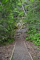 The Chilkoot Trail Starts Here.JPG