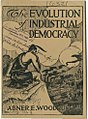 The Evolution of Industrial Democracy (Woodruff) cover.jpg