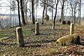 The Old German cemetery in Sabile - panoramio (1).jpg
