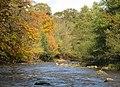 The River Allen (3) - geograph.org.uk - 598394.jpg