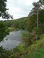 The River Ayr - geograph.org.uk - 573955.jpg